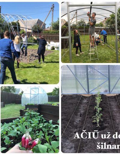 Our green garden
